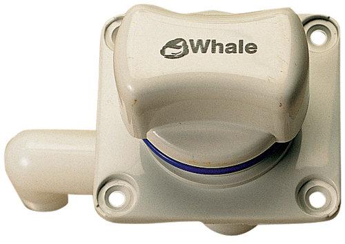 Whale - Vandhane, enkel