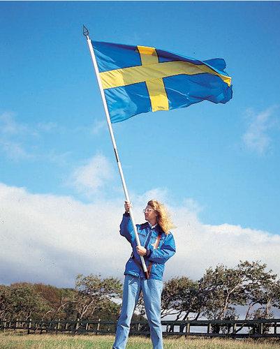- Svenska fana med tillbehör